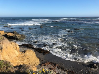 Pacific coast in Cambria